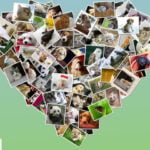 10 Best Photo Frame Apps For Android 2021